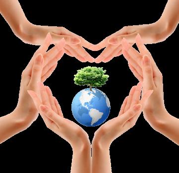 Aplicación de la normativa ambiental