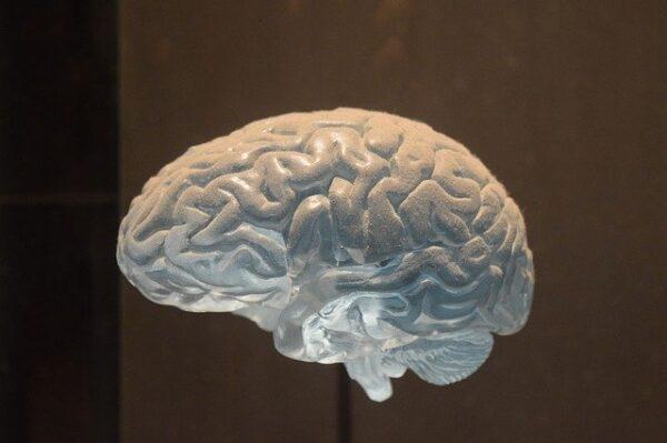Atención inicial ante emergencias neurológicas y psiquiátricas