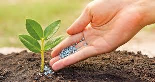Manejo y Mantenimiento de Equipos de Aplicación de Fertilizantes