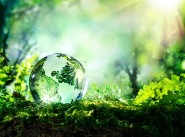 Determinación y Comunicación del Sistema de Gestión Ambiental (SGA)