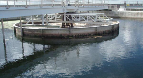 Energía de la Biomasa, del Agua y Eficiencia Energética