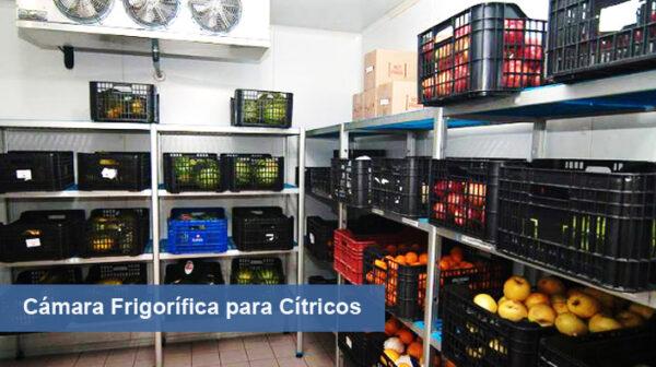 Caracterización de Procesos e Instalaciones Frigoríficas